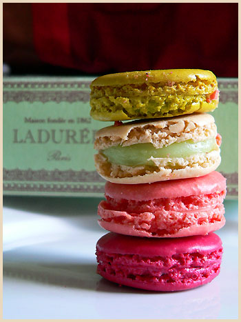 Laduree+maccarrons